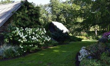 Foto: Skaistākie dārzi un sakoptākie īpašumi Preiļu novadā