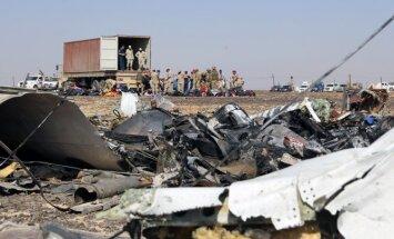 Лондон назвал вероятного организатора авиакатастрофы в Египте