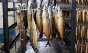 Krievijas ministrs: Latvijas zivju importa aizliegums var tikt atcelts divu nedēļu laikā