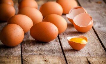 Газета: Латвийские производители яиц обеспокоены конкурентами из Украины