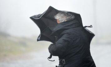 Cиноптики: в среду ожидается порывистый ветер и дожди