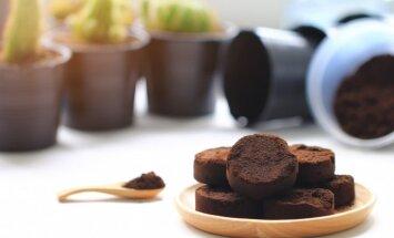 Neizmet, bet saglabā! Kafijas biezumu pielietojums augsnes uzlabošanai