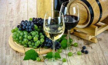 Latvijā mazās vīna darītavas vīnu drīkstēs ražot tikai no vietējiem produktiem