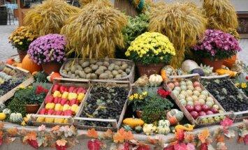 Sankciju karš: Krievija aizliedz Polijas augļu un dārzeņu importu
