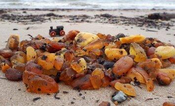 Foto: Pāvilostā jūra izskalo neparasti daudz dzintara