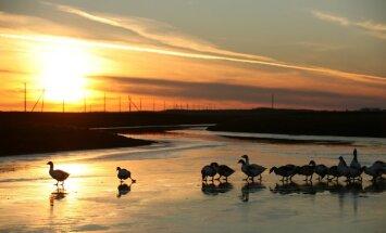 Spēcīga anticiklona ietekmē pirmdien Latvijā ir pēdējos gados augstākais atmosfēras spiediens