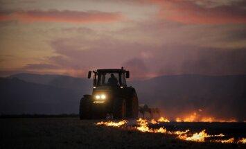 Spānija cīnās ar mežu ugunsgrēkiem Kanāriju salās