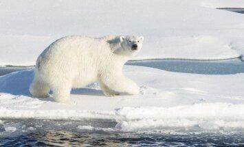 Krievijas arktiskā stacija izkļūst no polārlāču aplenkuma