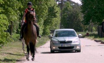 'Zebra': Kā autovadītājam reaģēt uz zirgu satiksmē