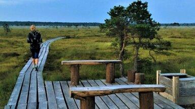 Izveidots ceļvedis, kas apkopo vairāk nekā 80 Kurzemes un Ziemeļlietuvas dabas takas