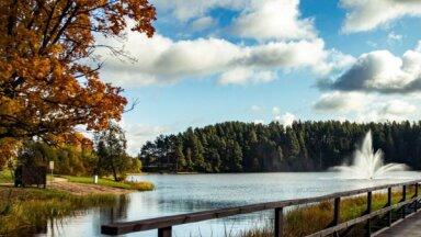 Foto: Košas rudens krāsu spēles Smiltenes pusē