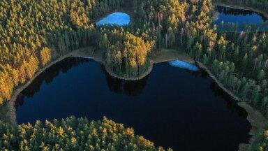 Пять впечатляющих озер Латвии, которые стоят того, чтобы их увидеть
