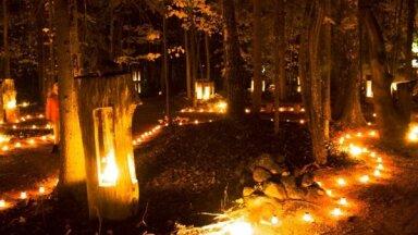Vienkoču parkā notiks gadskārtējā Uguns nakts