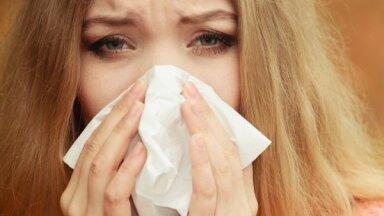 Киста гайморовой пазухи: лечение и симптомы