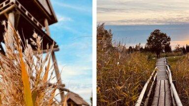 Kā skaista pastkarte: Kaņiera ezers rudenī