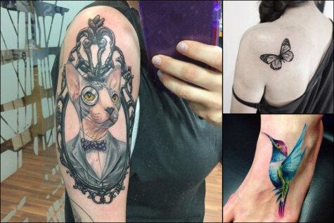 Разбуди в себе зверя: 15 идей для татуировок для всех любителей животных