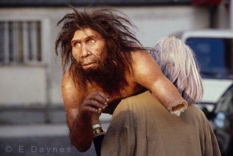 Spalvainie purni: kā izskatījās mūsu senči pirms miljoniem gadu