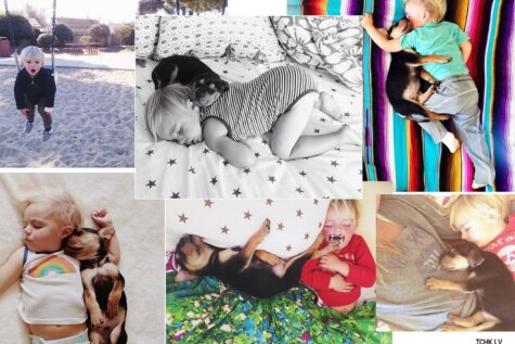 Как фото ребенка и щенка принесли славу и богатство