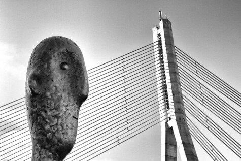 Фото Вантового моста вышло в финал модного конкурса; для победы ему нужен твой голос!