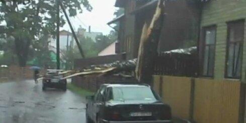Vētras sekas Pārdaugavā