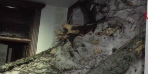 Lavīnas apraktajā viesnīcā Itālijā vēl cer atrast izdzīvojušos