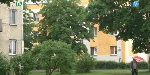 Jēkabpils iedzīvotāji pauž neapmierinātību par koku izciršanu