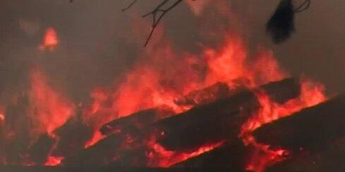 Kalifornijā plosās ugunsgrēks; evakuēti vairāk nekā tūkstotis iedzīvotāju