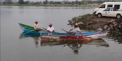 Meksikā izskalo 48 tonnas beigtu zivju
