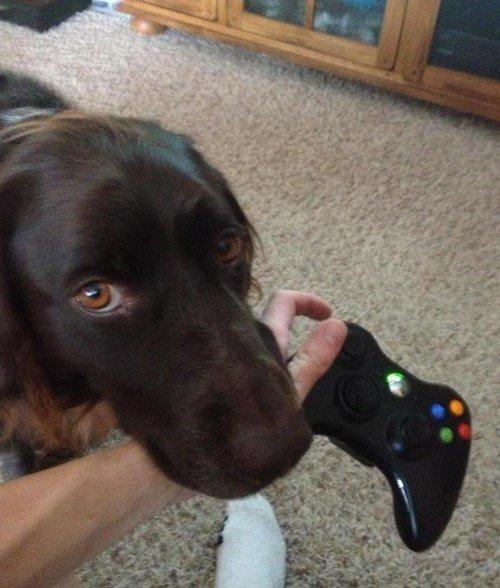 Un ar mani paspēlēsies?...