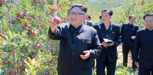 КНДР согласилась поддерживать постоянный контакт с ООН