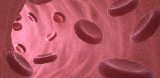 Ученые поставили лабораторную кровь на поток