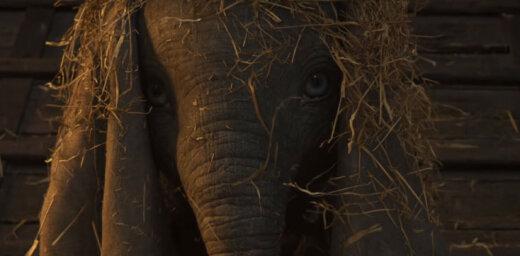 Video: Pirmais ieskats Disneja filmā par zilonēnu Dambo