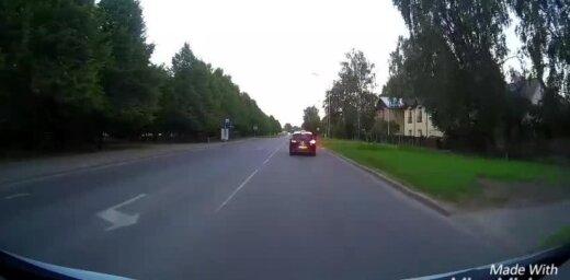Video: Aļņu pāris iekaro Purvciemu