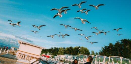ФОТО: Непогода не помешала веселью на открытии комплекса Legend Beach