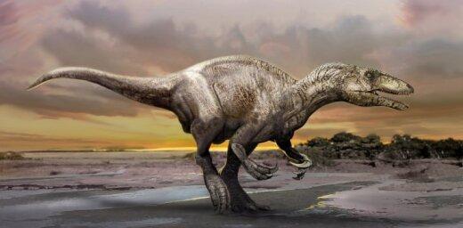Названа причина расцвета популяции динозавров