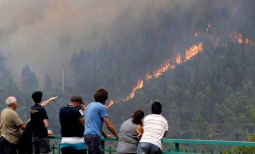 Plašais mežu ugunsgrēks Portugālē daļēji pakļauts kontrolei