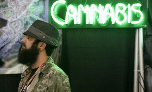 За легализацию марихуаны собрано 10 000 подписей, вопросом займется Сейм