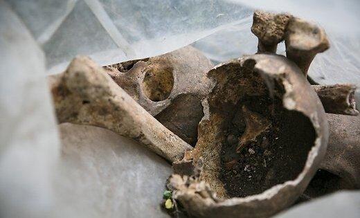 В Видземе за сутки нашли человеческие кости и тело неизвестного мужчины