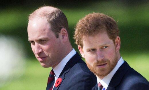 Никто вкоролевской семье не желает быть монархом— Принц Гарри