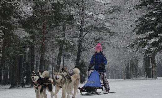 Foto: Tēja ar skatu un brauciens suņu pajūgā – 'Delfi' lasītāji izgaršo ziemu