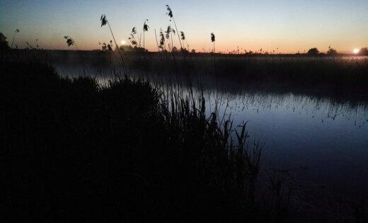 Naktī Kurzemē novērota salna līdz pat -1,6 grādiem