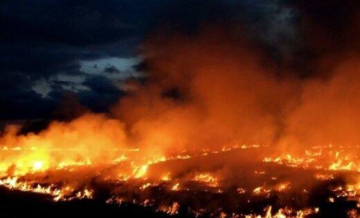 Пожар на военном полигоне в Адажи: на помощь спасателям пришел дождь