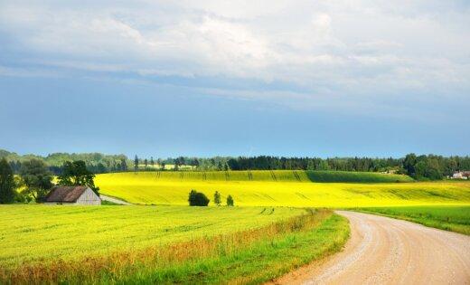 Lauksaimnieki ir par nodokļu reformu: saglabāsies atbalsts, mazināsies ēnu ekonomika