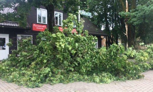 Полиция прокомментировала последствия бури в Саулкрасты