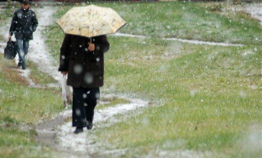 Синоптики: в четверг ожидаются небольшие дожди, воздух прогреется до +7 градусов