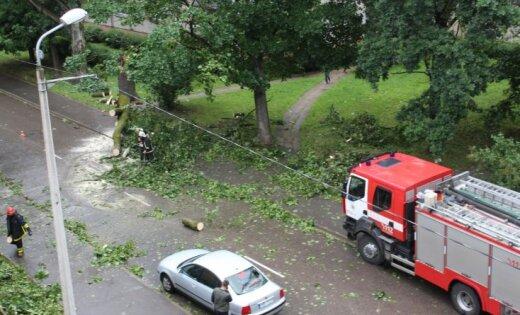 Vētras dēļ visvairāk elektrotīklu bojājumu valsts centrālajā daļā
