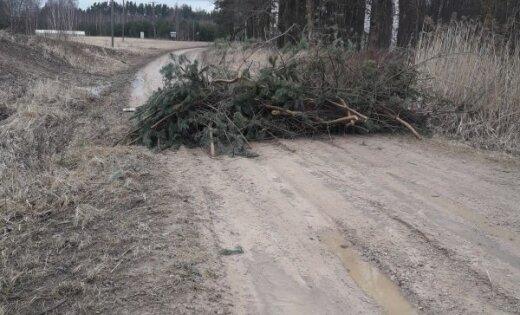 """""""Животные в роли заложников"""". Местные жители заблокировали дорогу в приют Ķepu-ķepā"""