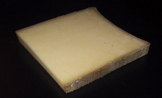 От 100 до 1000 евро за килограмм: 11 самых дорогих в мире сыров