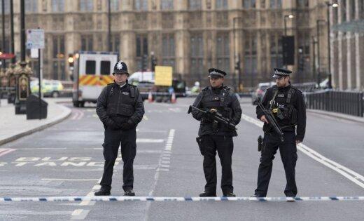 Что случилось вцентре Лондона— Теракт в Англии