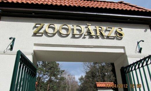 Rīgas zoodārzs prasa 100 000 eiro deficīta segšanai un norāda uz grūtībām attīstīties